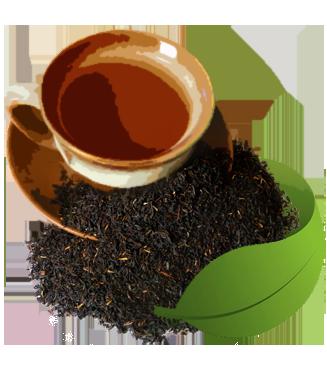 چای خاور